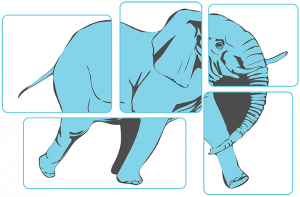 blind men and the elephant - What part of the Patient Engagement 'Elephant' is your priority?