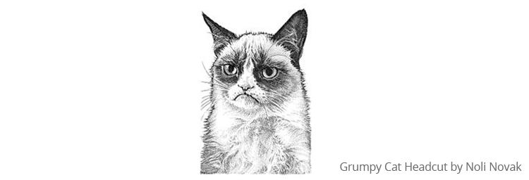 Grumpy Cat Headcut by Noli Novak - patient engagement software